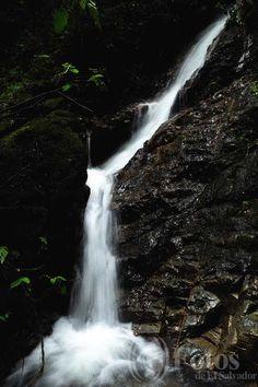 Bosque Montecristo ubicado en Metapán, Santa Ana El Salvador