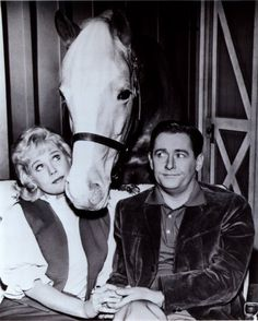 """""""A horse is a horse, of course, of course, and no one can talk to a horse of course, That is, of course, unless the horse is the famous Mr. Ed!"""""""