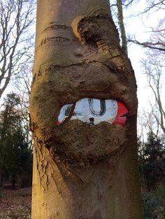 Kunst in de natuur, Koninklijk Landgoed De Horsten
