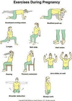 Day 10: Quadriped Arm/Leg Raises, Modified Pushups, Lunges Day 11:Heel Raises, Bicep Curls, Shoulder Abductions