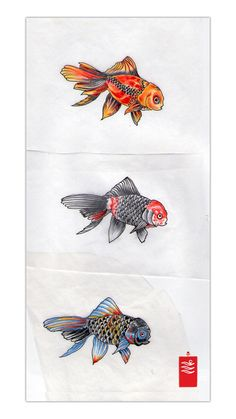 Google Image Result for http://tattoo.yoso.eu/wp-content/uploads/2009/10/king_yo_japanese_gold_fish_tattoo_flash_thumb.jpg