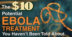 Dr. Robert Rowen, an expert on oxidative therapy, discusses how ozone therapy can be helpful in treating the Ebola virus. http://articles.mercola.com/sites/articles/archive/2014/10/26/ozone-therapy-ebola.aspx