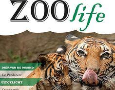 "Check out new work on my @Behance portfolio: ""ZOOlife magazine"" http://be.net/gallery/50960357/ZOOlife-magazine"