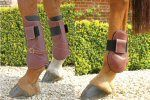Mark Todd Leather Tendon and Fetlock Boots Cob