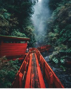 Pucon National Park, Villarica (east of Chile) Chile Travel Destinations Travel Photography Inspiration, Landscape Photography, Nature Photography, Photography Magazine, Film Photography, Beautiful World, Beautiful Places, Paraiso Natural, Journey