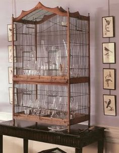 A wooden birdcage that has been transformed into a display cabinet for glassware. To the sides of the cage are bird prints playfully displayed. An image from Martha moments. La Maison Fou: Bird on a wire . Antique Bird Cages, The Caged Bird Sings, Bird Aviary, Pet Furniture, Rustic Shelves, Vintage Birds, Vintage Prints, Beautiful Birds, Bird Houses