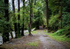 Caminos Bike and Run alrededor de #VernedaCampingMountainResort  #slowlife #slowtourism #valdaran #pirineos #senderismo