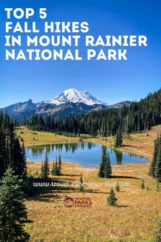 Best Hikes to Enjoy Fall Colors and Scenery in Mount Rainier National Park, Washington State Mount Rainier National Park, Best Hikes, Washington State, National Parks, Scenery, Hiking, America, Mountains, Colors