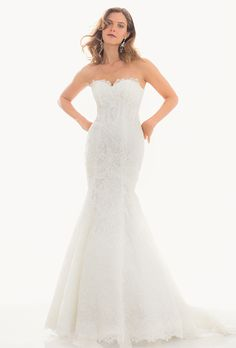 Brides: Judd Waddell. Layered lace fit-and-flare dress with chapel train.