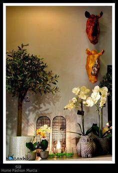 Cabezas elefantes decorativas giwa sia decoracion for Sia decoracion