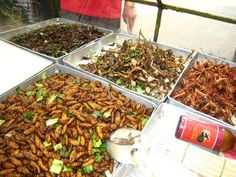 Gotta try some bugs this time. Bangkok Thailand, Vacation Ideas, Fried Rice, Bugs, Fries, Ethnic Recipes, Food, Beetles, Essen