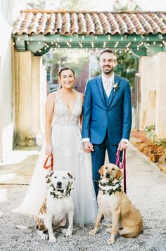 It's National Pet Day! I absolutely love when my couples have had their pets as a part of their wedding day! Do you have any pets? Are you going to incorporate them into your wedding plans? Dog Wedding, Wedding Day, National Pet Day, Makeup Portfolio, Oklahoma Wedding, Tulsa Oklahoma, Wedding Portraits, Special Events, Houston