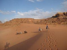 Le désert du Wadirum à cheval