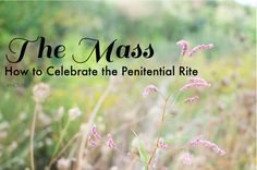 "As we will discover together, the Mass is like climbing a mountain. This  ""mountain experience"" gets higher and higher, better and better, as we  progress through this prayer time together. The Penitential Rite is just  the next high we have during Mass."