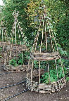 twig garden supports