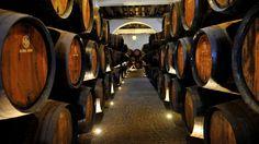 Caves do Vinho do Porto concorrem a Património da Humanidade