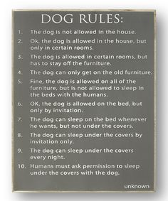 Funny Dog Rules Sign