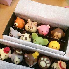 日本人のおやつ♫(^ω^) Cute Japanese Chocolates (cute! Japanese Food Art, Japanese Candy, Japanese Sweets, Cute Japanese Stuff, Japanese Animals, Japanese Wagashi, Japanese Chocolate, Chocolate Art, Cute Desserts