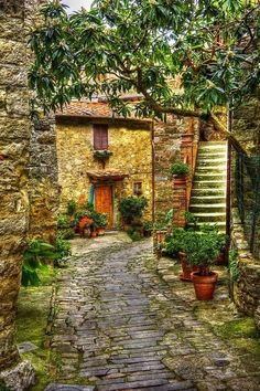 Cobblestone Path, Monefili, Italy