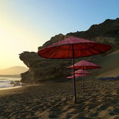 Latest Amazing Holiday By The Beach News
