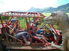 Waterfall Mud Bug Tour  http://www.kauai.com/kauai-tours/kauai-atv-waterfall-tour