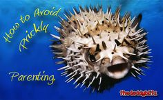 How to Avoid Prickly Parenting   As a parent, do you ever feel prickly? Learn how to diffuse conflict with children by not sweating the small stuff. #parenting #Christianity