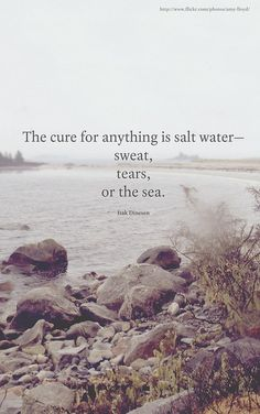 """The cure for anything is salt water - sweat, tears, or the sea"" ~ Isak Dinesen (pseudonym of Baroness Karen Blixen) Great Quotes, Quotes To Live By, Me Quotes, Inspirational Quotes, Beach Quotes, Quotes About The Sea, Quotes About Water, Wisdom Quotes, Famous Quotes"