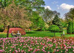 Sherwood Gardens, Baltimore MD