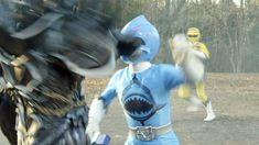 Power Rangers, Shark, Blue, Powe Rangers, Sharks