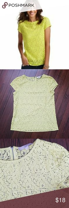 "Loft Lace Top with Exposed Zipper Back Color is true in cover picture.   18.5"" across bust  25"" length LOFT Tops"