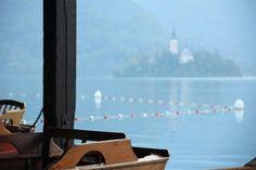Občina Bled in Občina Bled