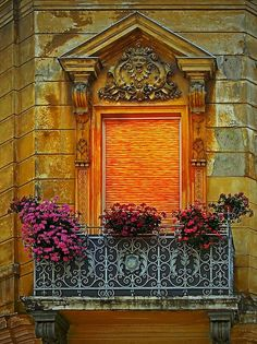 The colors of the flowers are a perfect foil for the colors in the building and window.
