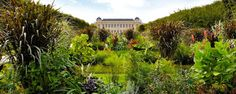 4 jardins trop mignons Rive Gauche   Le Bonbon