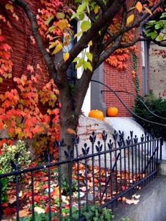 Autumnal entry to home....