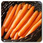 Organic Scarlet Nantes Carrot