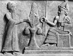 Nephilim. Anunnaki lifespans were 120 sars which is 120 x 3,600 or 432,000 years. According to the King List - 120 sars had passed from the time the Anunnaki arrived on Earth to the time of the Great Flood.
