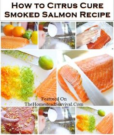 How to Citrus Cure Smoked Salmon Recipe | The Homestead Survival