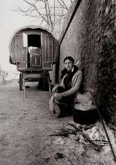 Gypsy:  Irish Tinkers (#Gypsies).