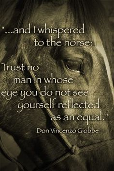 And I whispered to the horse. . .
