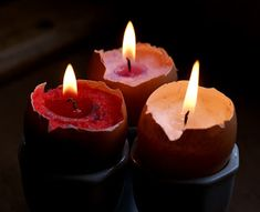 lightly enchanted: Egg Shell Candles