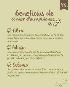 La Piccolina Trattoria: Beneficios de comer champiñones - Trattoria La Pic...