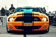Super Snake. Ford Mustang Shelby GT500