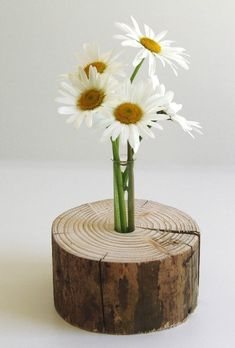 Stylish vase in the tree trunk as decoration for your living room, dining room, bedroom . Wooden Crafts, Wooden Diy, Diy And Crafts, Bud Vases, Flower Vases, Flower Pots, Test Tube Crafts, Wood Vase, Deco Floral