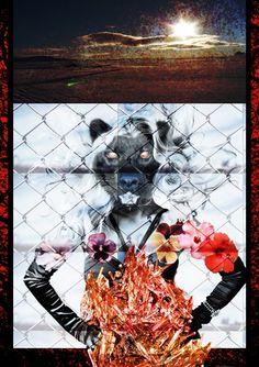 Dave Mckean : un nouvel hommage auMaître - Décembre 2009