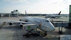 Lufthansa Boeing 747-8 Fanhansa (Kennung D-ABYO) nach ihrer Ankunft in Frankfurt - Check more at http://www.miles-around.de/trip-reports/economy-class/lufthansa-boeing-747-8-economy-class-los-angeles-nach-frankfurt/,  #747-8 #Airport #avgeek #Aviation #Boeing #EconomyClass #Flughafen #FRA #Kalifornien #LAX #LEJ #Lounge #Lufthansa #LufthansaSenatorLounge #StarAllianceLounge #Trip-Report #USA