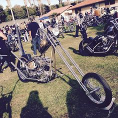 kill scum speed cult chop cult born free david mann art traditional flash tattoo motorcycle chopper bobber indian harley triumph bsa honda ironhead panhead flathead knucklehead shovelhead54 by killscumspeedcult on Flickr.