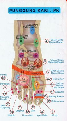 Titik sehat Source by Health And Beauty, Health And Wellness, Health Tips, Health Care, Health Fitness, Acupressure Treatment, Reflexology Massage, Natural Pain Relief, Healing Oils
