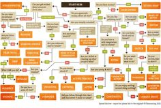 Filmmaking Flowchart - Which Job Is Best for You? Infographic