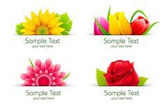 Flower Label Design Vector [AI]