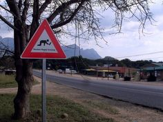 31 Pictures That Prove South Africa Is The Craziest Place On Earth Haha Funny, Funny Jokes, Hilarious, Funny Street Signs, Aging Humor, Main Street, Continents, South Africa, Funny Pictures
